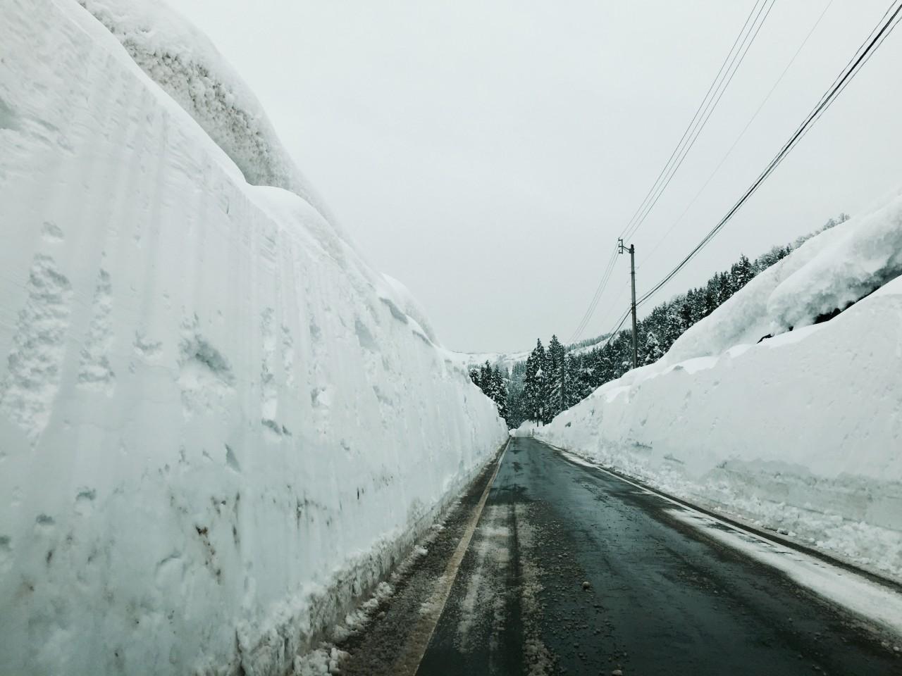 雪が降りやむ頃にもう道路面が見えて……。