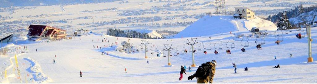 新潟 県 スキー 場 積雪 情報