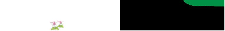 南魚沼市移住定住情報サイトSUMU SUMO・南魚沼まちづくり推進機構